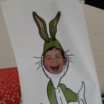 De assistentie van meneer konijn